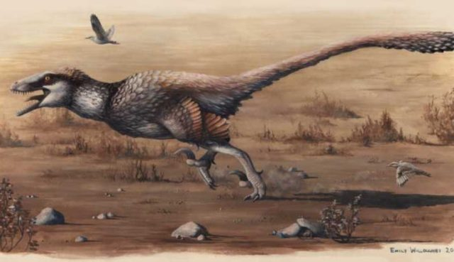 dakotaraptor-dinosaur-featured-730x422